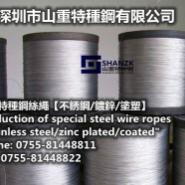 不锈钢316钢丝绳1mm图片