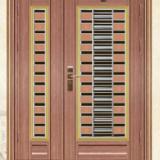 豪华彩板不锈钢门