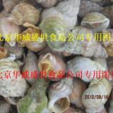 供应进口加拿大翡翠螺
