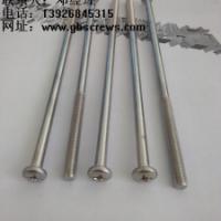 供应长沙不锈钢超长螺丝生产,生产不锈钢螺丝厂家