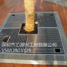 供应不锈钢树篦子/仿铜树篦子厂家图片
