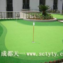 供应室内高尔夫/室内高尔夫练习场