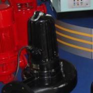 潜污泵图片
