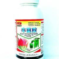 辣椒早熟增产抗病抗早衰上市早好农药倍增威