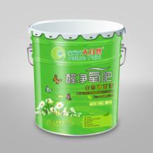 供应大自然环保漆招商-大自然漆加盟批发