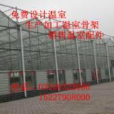 供应山东玻璃温室