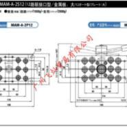 日东NITTO多路接头MAM-A-2P12图片