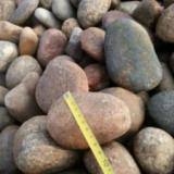 供应用于变压器 水处理 公园绿化的唐山5-8厘米鹅卵石批发