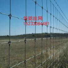 供应内蒙古草原网圈牛羊用网草原围栏网