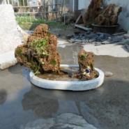 吸水石盆景制作厂家图片
