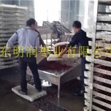 供应阿克苏红枣厂家新疆阿克苏红枣批发价格批发
