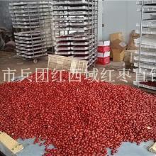供应新疆大枣厂家代加工批发新疆和田大枣若羌灰枣