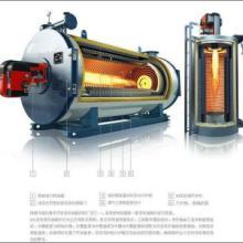 供应新疆YGL-立·卧式燃油(气)导热油炉
