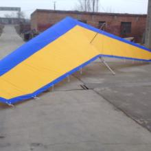 供应无动力三角翼滑翔机,鹤壁飞友佳人专业定做无动力三角翼批发