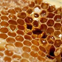 供应蜂蜜高浓度蜂蜜俄罗斯蜂蜜俄罗斯蜂蜜俄罗斯蜂蜜批发蜂蜜批发