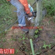 河北便携式挖树机,河北便携式挖树机厂家电话,河北便携式挖树机报价批发