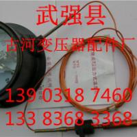 WTZ-288压力式温度计表