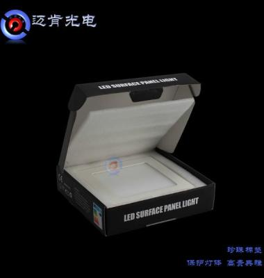 LED明装面板灯图片/LED明装面板灯样板图 (3)