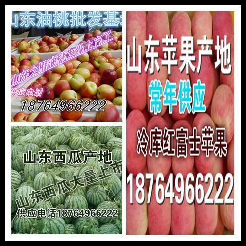 山东沂水县水果合作社