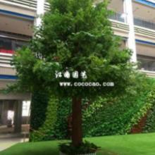 供应仿真植物枫树