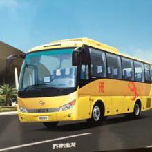 供应金龙KLQ6798H系列 苏州金龙30-35座批发