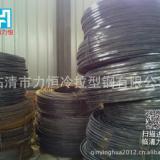 平行带钢厂家大量供应 20×5平行带钢厂家供应临清力恒