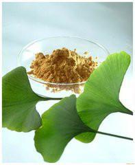 供应用于扩张血管银杏叶提取物