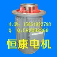 CB-B齿轮泵配套液压电机图片