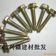 乌鲁木齐钻尾螺丝规格图片