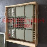 户外控制电机防爆动力配电箱BXD