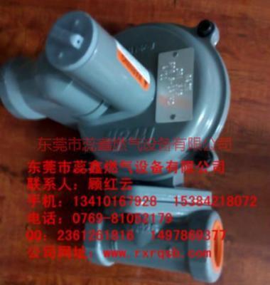 燃气调压器图片/燃气调压器样板图 (3)