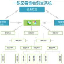 供应广东微商分销软件代理加盟
