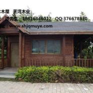 贵州哪里有红梢木卖图片