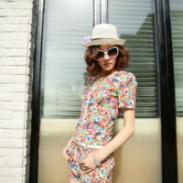 哪里有夏季韩版女套装批发零售图片