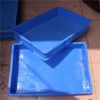 大麦虫养殖盒