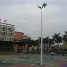 供应球场灯杆  5米路灯灯杆  一拖二灯柱