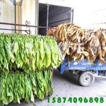 供应烟草烘干机箱式干燥设备烟叶烘干机
