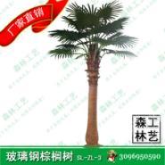 仿真棕榈树·玻璃钢老人葵SL-ZL-3胶图片