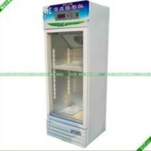 供应专业酸奶机专业酸奶机价格