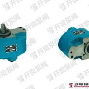 CB-B低压齿轮油泵图片