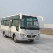 楚风牌19座中巴客车国四标准图片