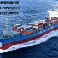 广东东莞到福建福州海运专线图片