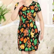 衣裙2图片