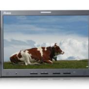 瑞鸽TL-S1900HDW监视器图片