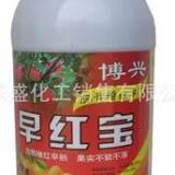 供应早红宝苹果桃石榴催红好农药催红催熟口感好不含激素