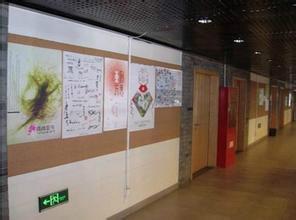 供应软木照片墙软木艺术、软木卷软木宣传栏0软木照片墙软木产地