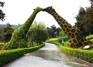 立体绿化工程哪里找_绿化工程立体绿化工程袠